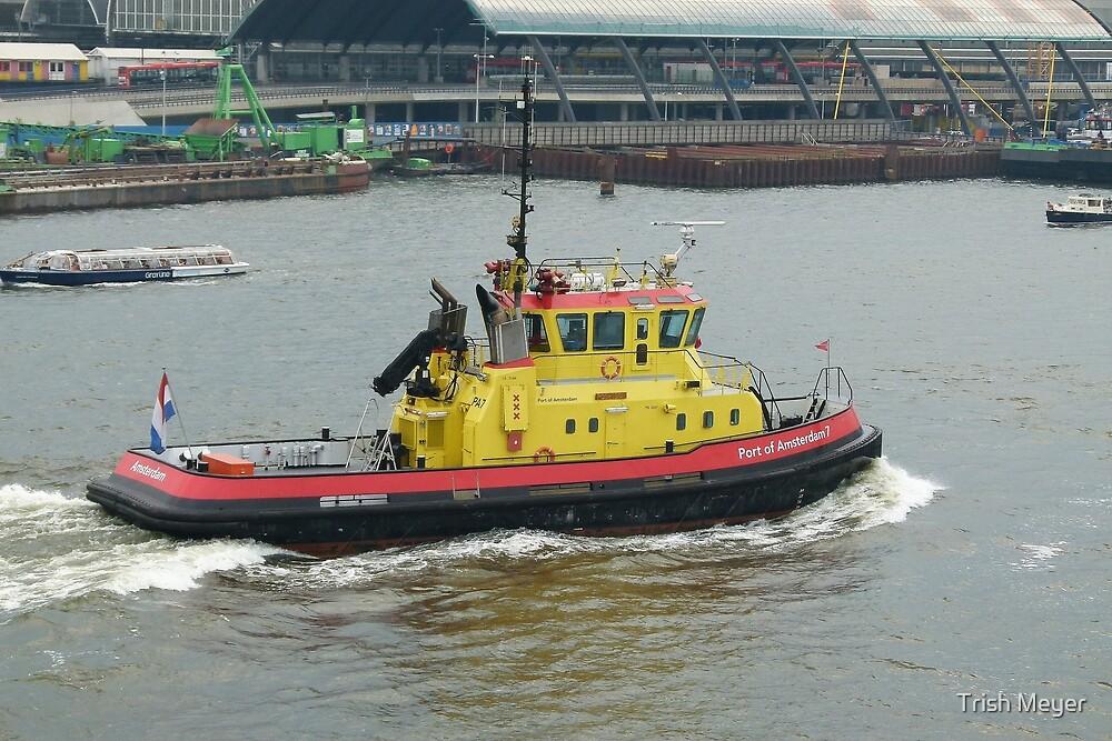 Port of Amsterdam 7 by Trish Meyer