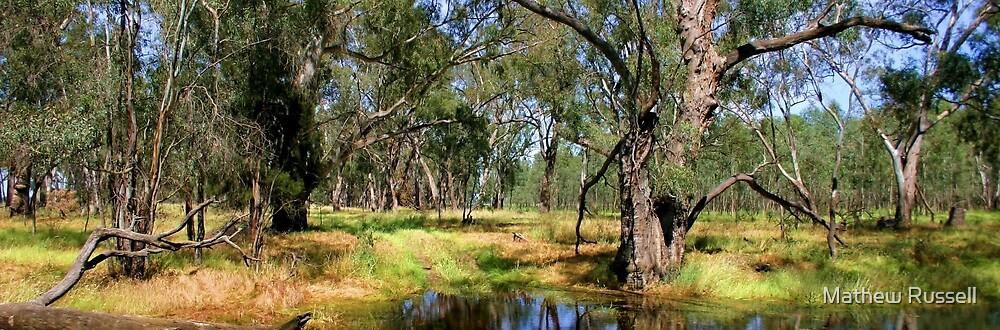Creek 2 by Mathew Russell