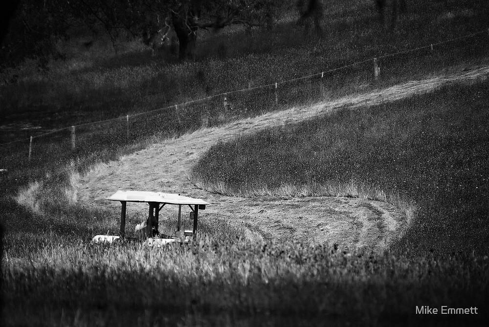 Grass needs cuttin' by Mike Emmett