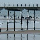 Saltburn Pier and the Horses by dougie1