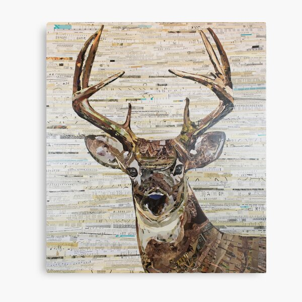 Whitetail Deer /Buck Collage by C.E. White Metal Print