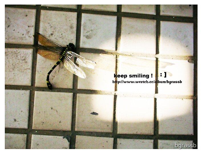 dragonfly 4 by bgrassb
