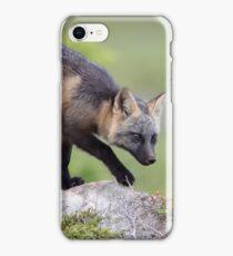 Stealthy Fox iPhone Case/Skin