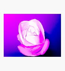 Mystic Flower  Photographic Print