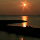 Sun Trails by Charles Adams