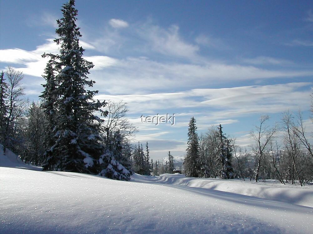 Winter Time by terjekj