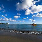 Waikiki Beach Hawaii by Toni McPherson