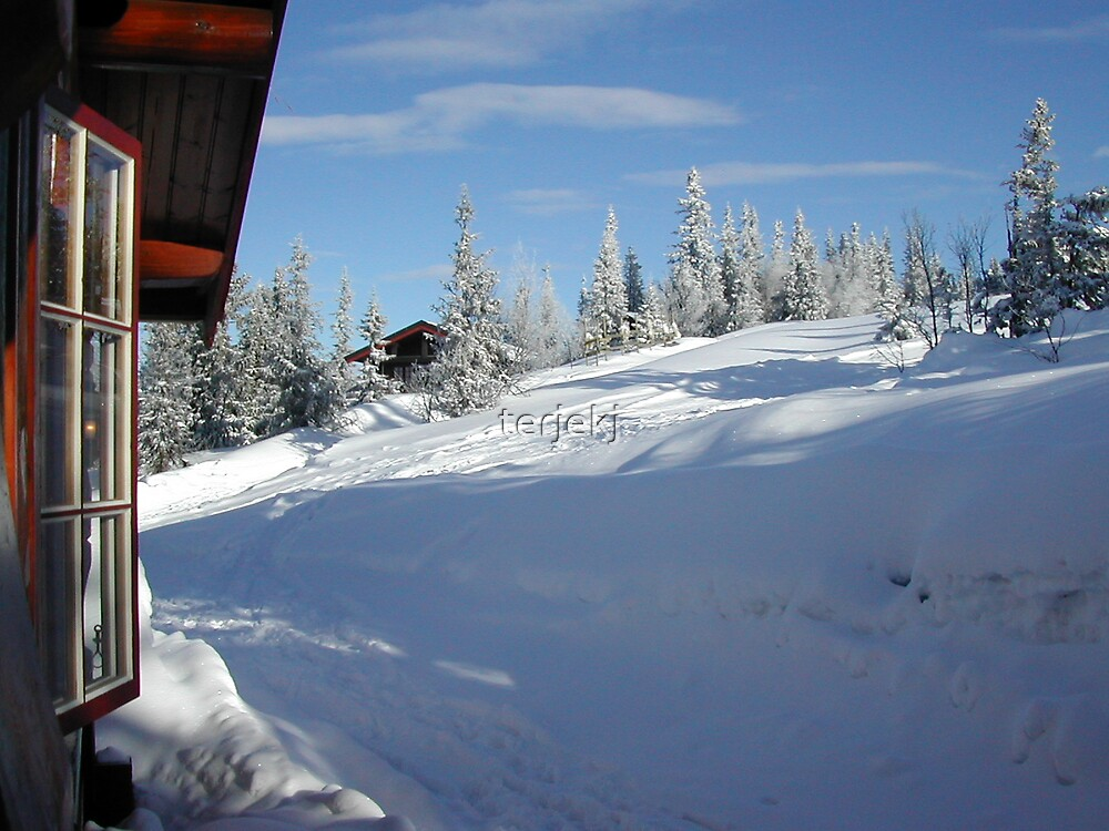 A nice Winter Day by terjekj