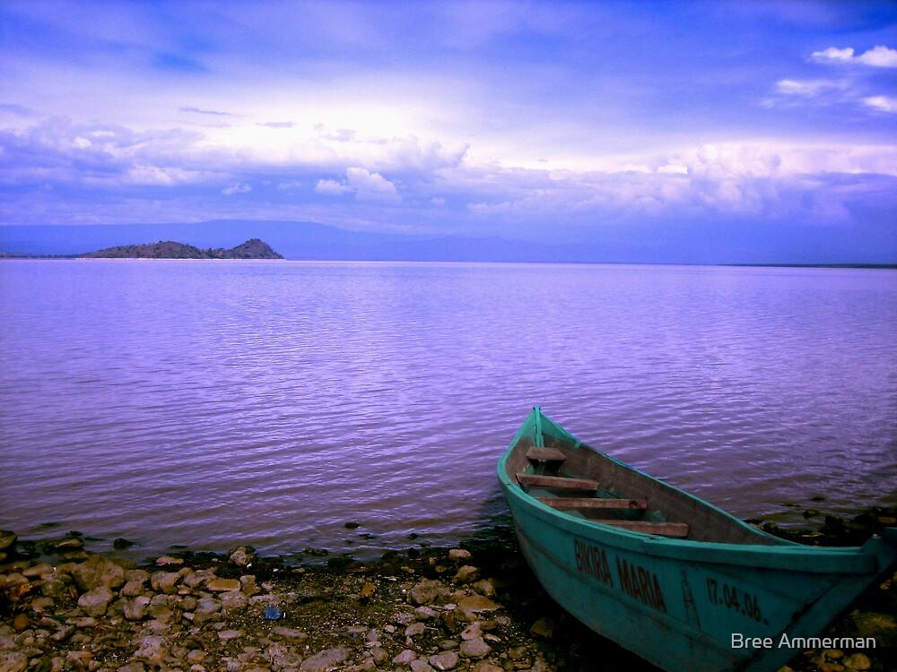 Serene Lake  by Bree Ammerman