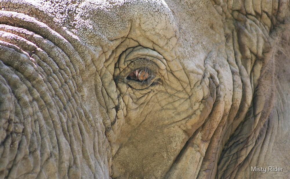 Eye of the Elephant by Misty Rider