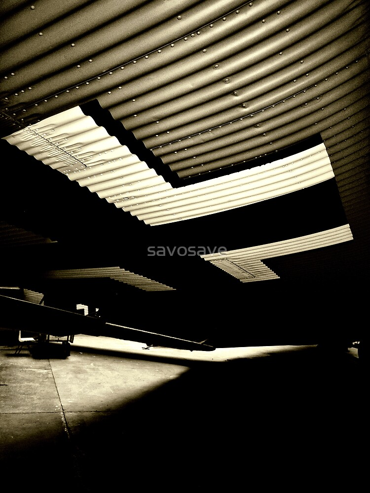 wing section by savosave