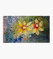 Daffodil Blues K Photographic Print