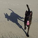 me & my shadow by Bruce  Dickson