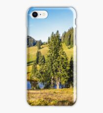 pine trees near lake on the meadow iPhone Case/Skin
