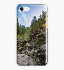 coniferous forest on a  rocky hillseide of mountain iPhone Case/Skin