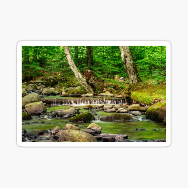 cascade on the little stream with stones in forest Sticker
