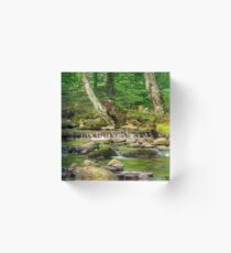 cascade on the little stream with stones in forest Acrylic Block