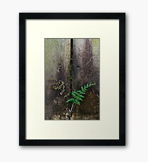 Finding your niche Framed Print
