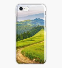road through conifer forest in mountains at sunrise iPhone Case/Skin