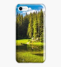 lake among the conifer forest iPhone Case/Skin