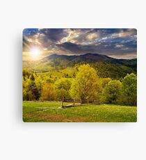 fence on hillside meadow in mountain at sunset Canvas Print