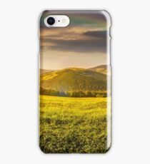hillside meadow in high mountains iPhone Case/Skin