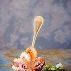 Still life with octopus by alan shapiro