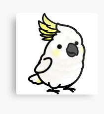 Chubby Sulphur-crested Cockatoo Metal Print