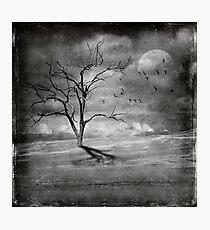 Dead Heart Photographic Print