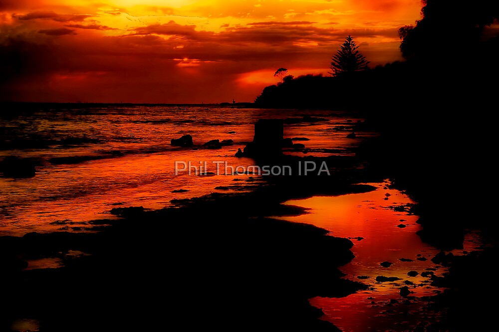 """""""Sunrise at the Spring"""" by Phil Thomson IPA"""