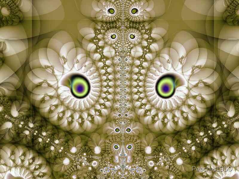 Owl's Eyes - Fractal Explorer by Peaches1950