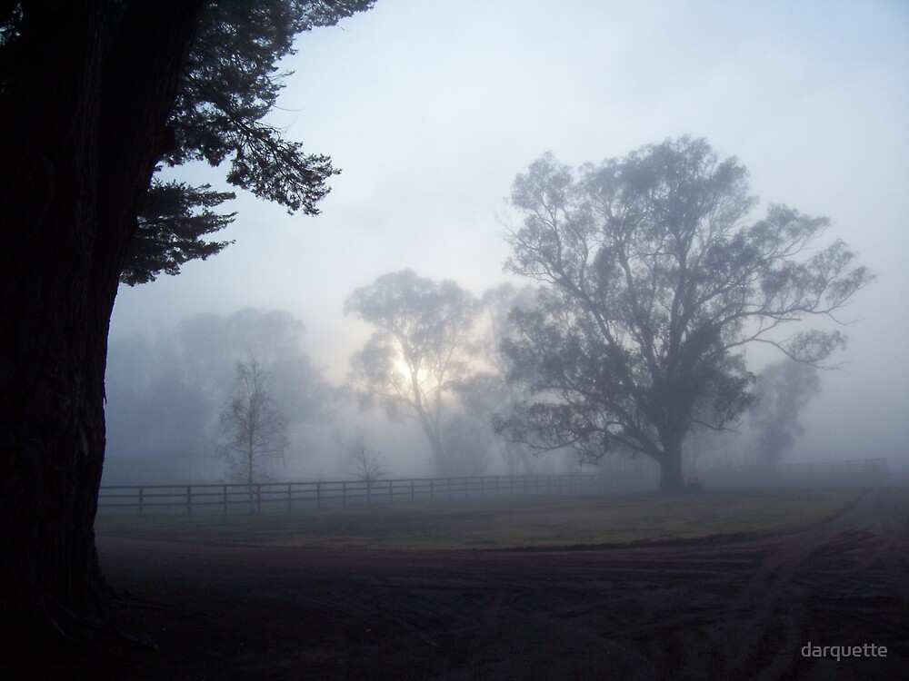 August Mist by darquette