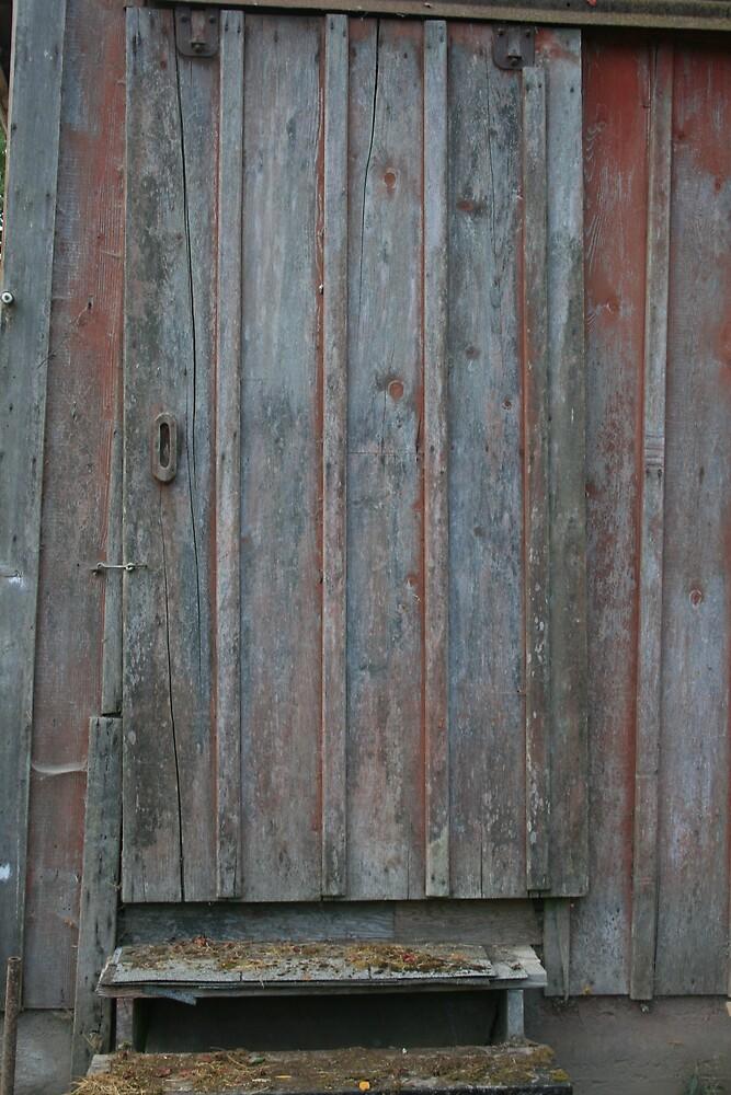The Old Barn Door by traveler25