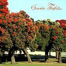 Drouin  Victoria  Australia by Bev Pascoe