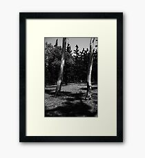 Two Trees | Black and White Framed Print