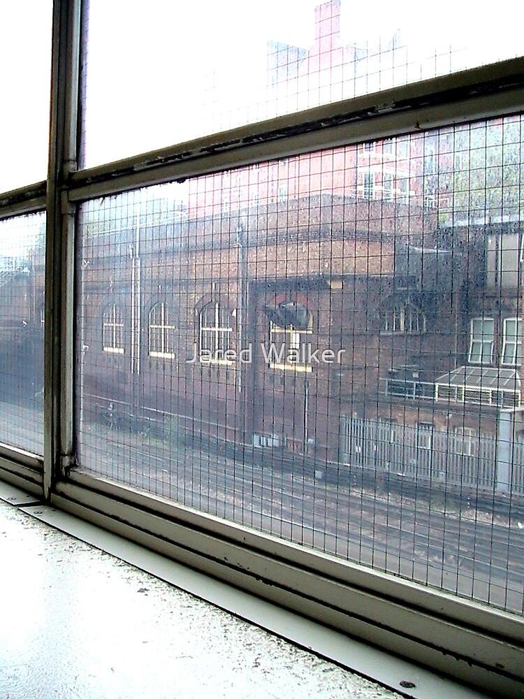 Window of History by Jared Walker