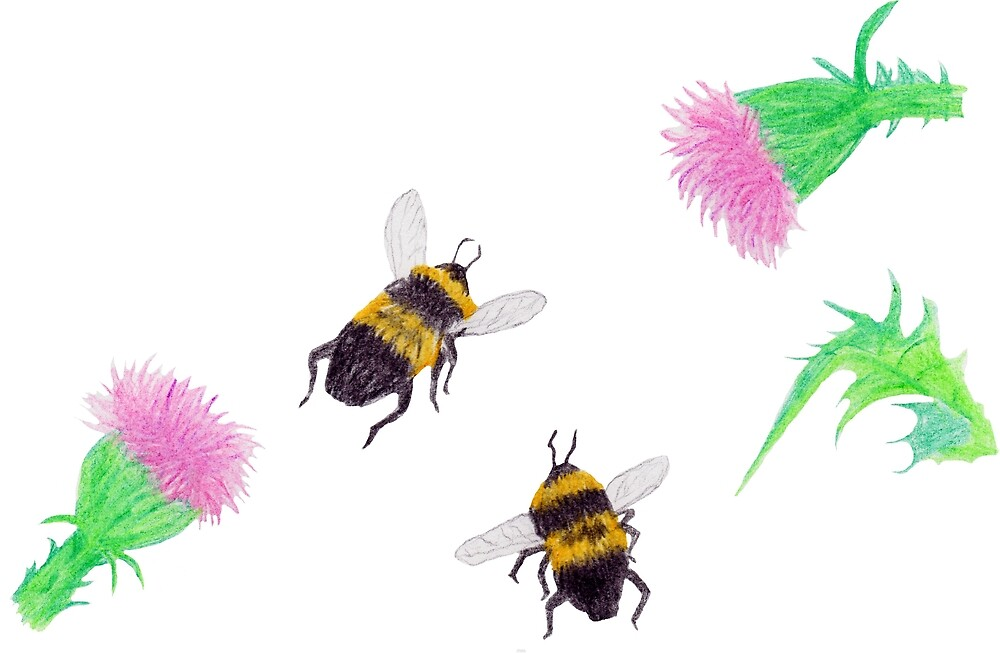 Bumblebees and Thistles by Linda Ursin