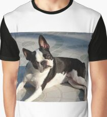 boston terrier laying Graphic T-Shirt