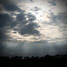 Crepuscular Rays by Dave Pearson
