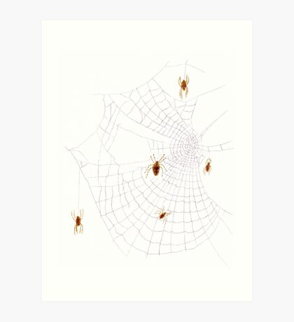 Spiders on the Web Art Print