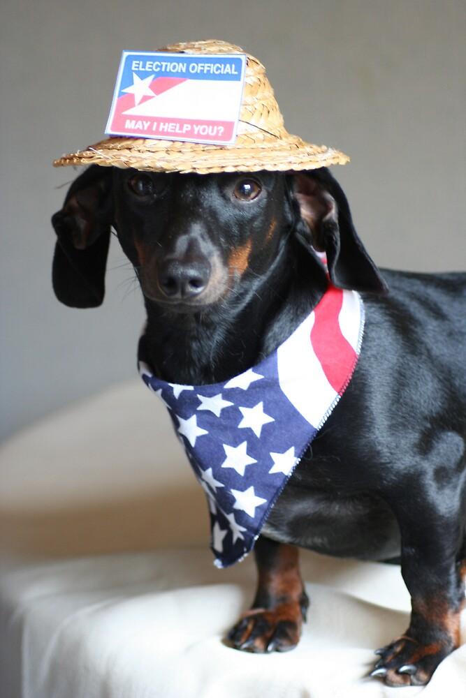 Political Puppy by Lori Walton