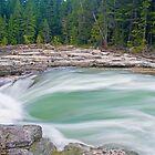 Along the Creek by Gary Lengyel
