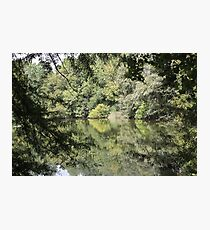 Sweet Reflection Photographic Print