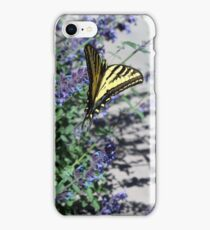 Tiger Swallowtail butterfly perfectly named......... iPhone Case/Skin