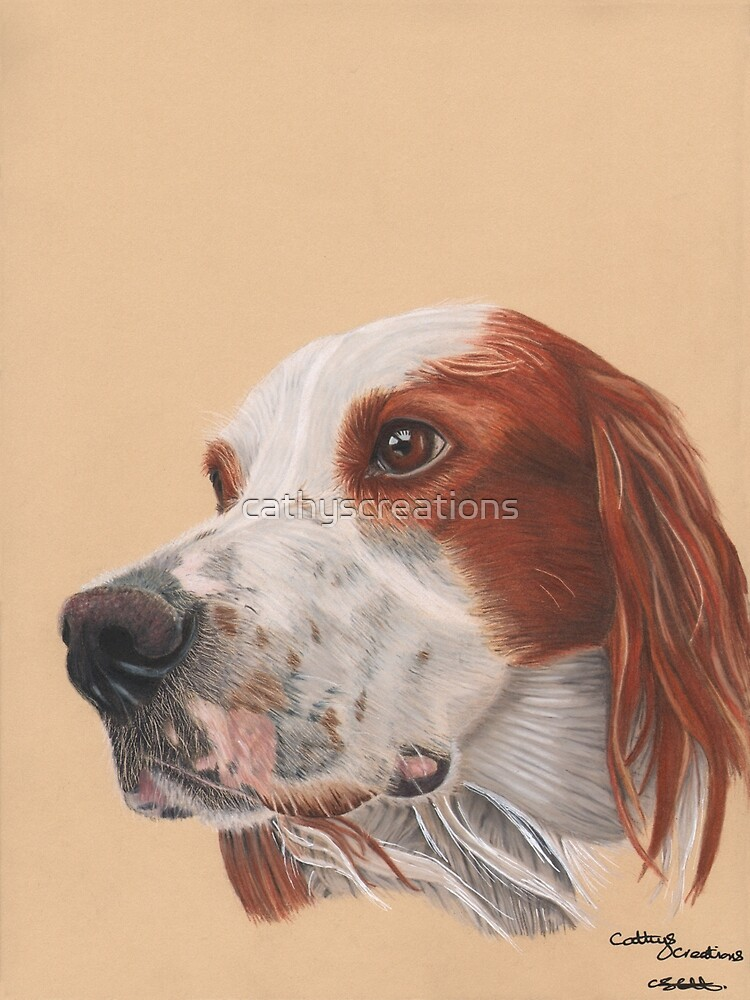 A red and white Irish Setter by cathyscreations