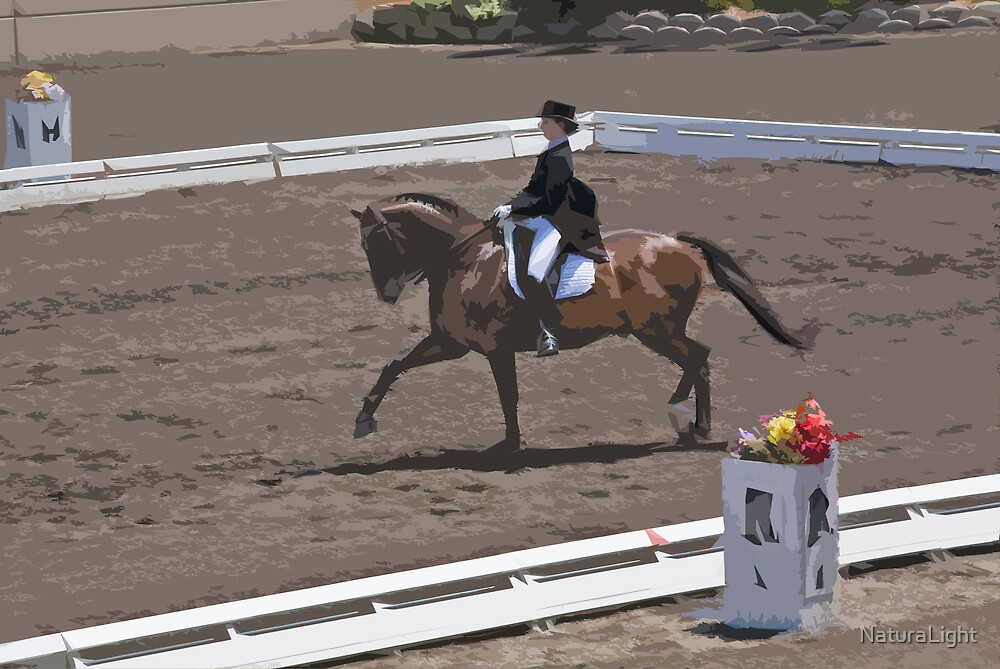 Stylized photo of a woman equestrian in dressage competition show ring. by NaturaLight