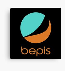 Bepis Aesthetic Canvas Print