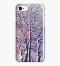 The Trees - The Enchanted Forest in Spring iPhone Case/Skin