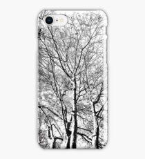 The Trees - Black & White iPhone Case/Skin