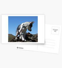 Bella on the Mountain above Farmington Canyon 2 Postcards